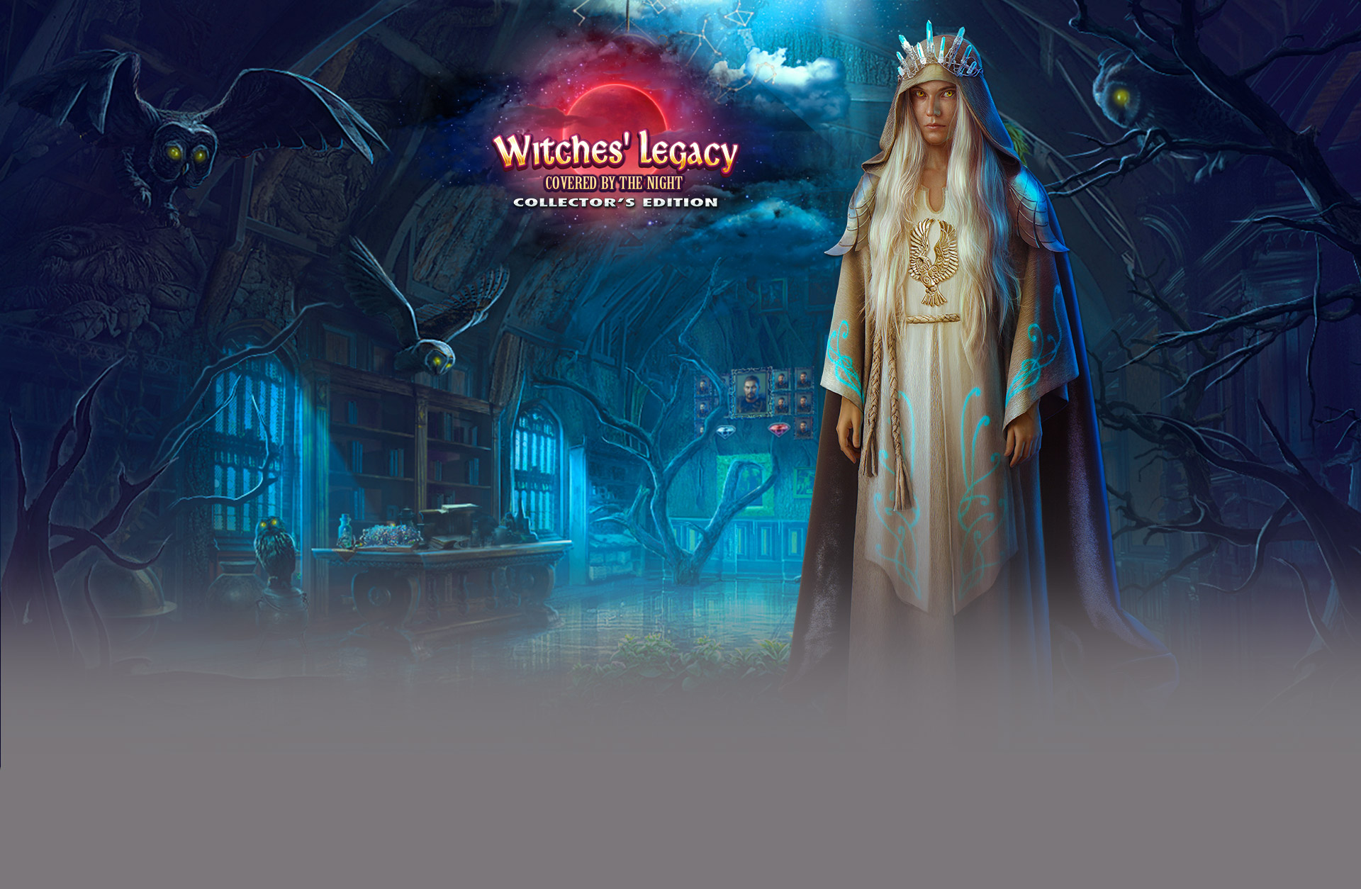 Witches' Legacy: Covered by the Night Collector's Edition